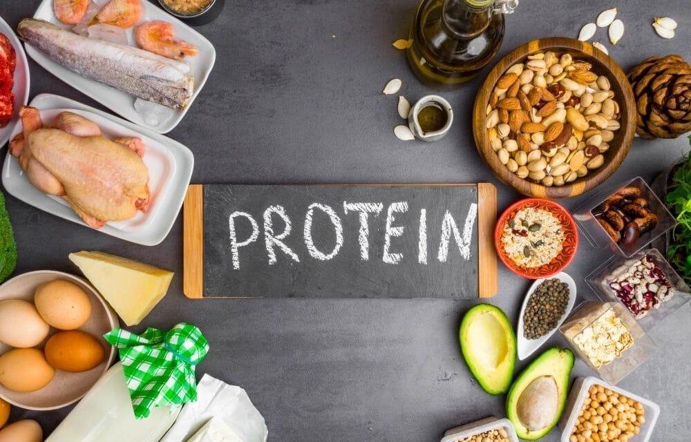 Ossa e nutrienti: a cosa servono le proteine?